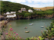 SW9980 : Port Isaac by Pam Brophy