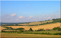 SU8312 : South Downs by Simon Carey