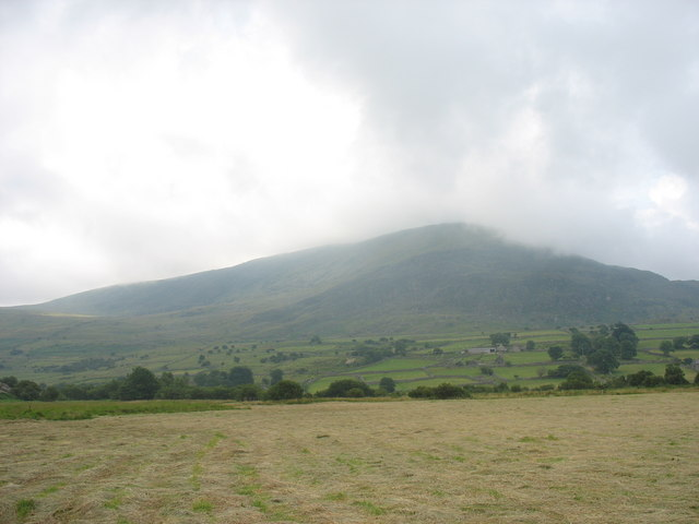 A marshy field at Cwmnantcol