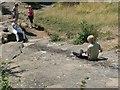 ST5673 : Down the Rock Slide, Clifton Down by Rich Tea