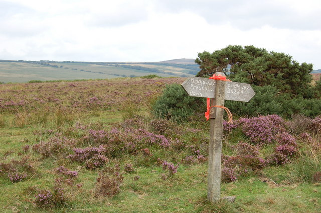 Bridleway sign on Kitnor Heath