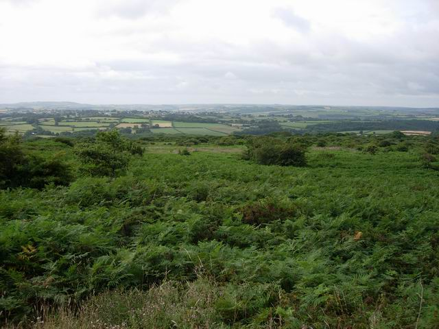 St Cleer Downs