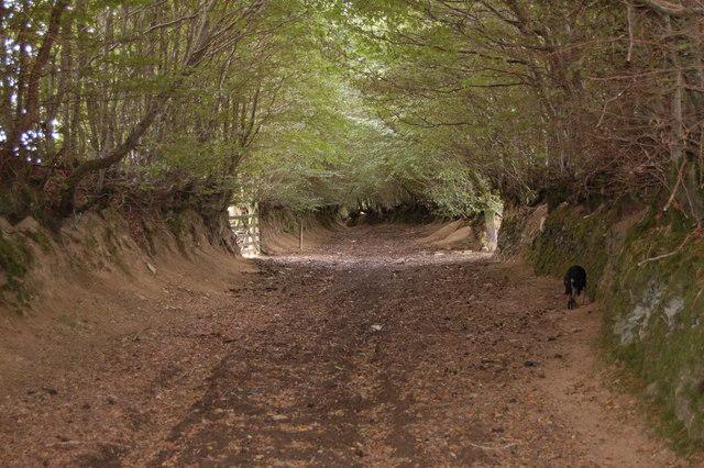 Very wide Bridleway off Thorne Lane