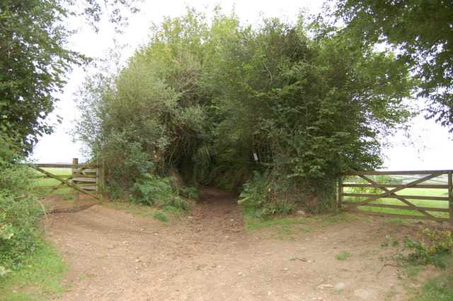 Bridleway and field gates at Oldrey Cross