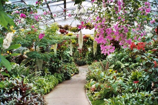 Winter Gardens, Duthie Park, Aberdeen