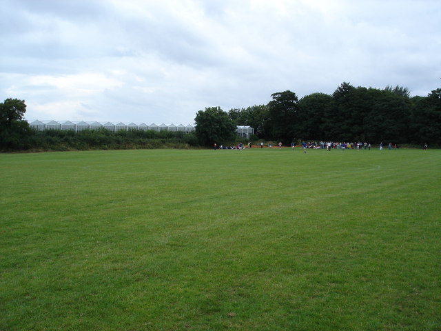 Playing field at Mosney