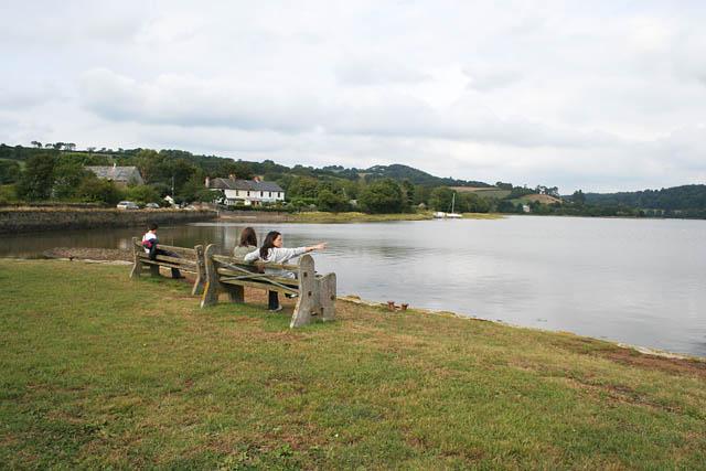 River Tavy at Bere Ferrers