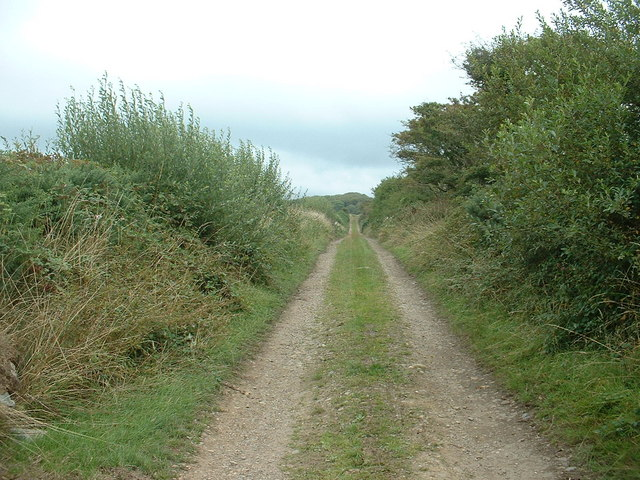 Lane to Caerychain plantation