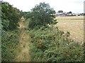 SJ9512 : Disused Railway by Geoff Pick