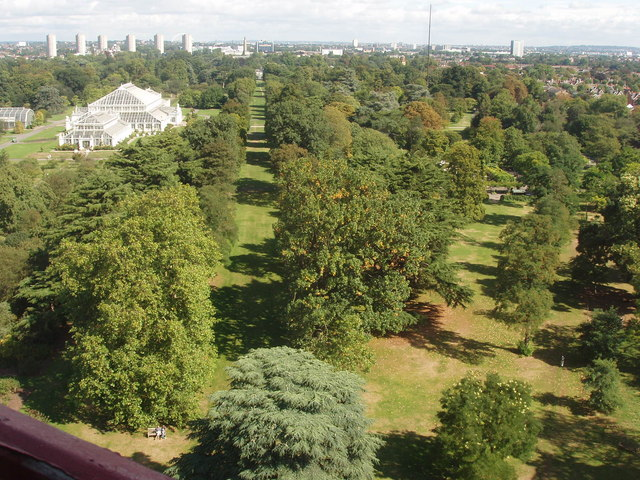 Kew Gardens, view north from Pagoda