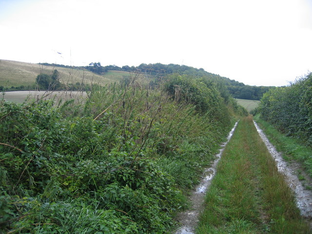 Pilgrim's Way, North Downs Way and ancient trackway combined