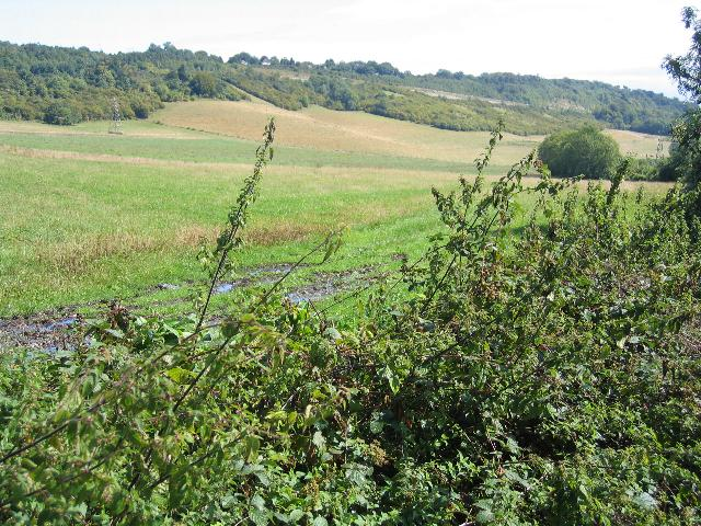 Across fields to the North Downs ridge