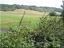 TQ5959 : Across fields to the North Downs ridge by Pip Rolls