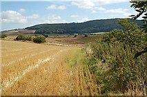 NO4116 : Towards Lydox Mill by Jim Bain