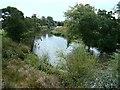 SK1034 : River Dove near Doveridge by Patrick Mackie