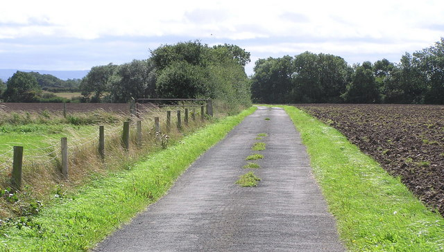 Lane to Aislaby Grange