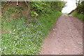 NY6138 : Green Lane near Gamblesby by Charles Rispin