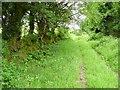 S2514 : Old farm track, Glenanore by Richard Webb