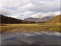 NH0155 : Loch Coulin Reflections. by Tom Forrest