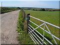 SX7947 : Track to Higher Heathfield Farm by Derek Harper