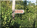 SO6869 : Roadsign near Frith Common by David Stowell