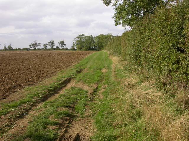 Headland Footpath through a Ploughed Field