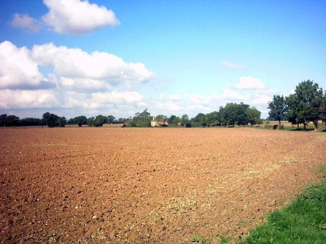 Fields off New Road