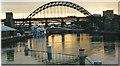 NZ2563 : Bridges across the Tyne by Carol Walker