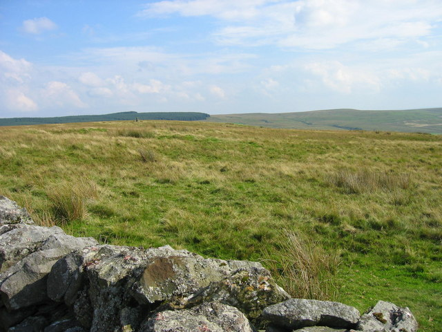 Moorland and Cairn near Moss Bank