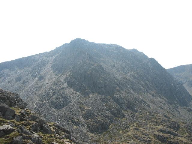 The Bristly Ridge