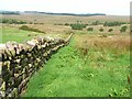 NY5569 : Wall near Askerton Castle by Oliver Dixon