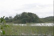 G6928 : Crannog on Ballygawley Lough by Bob Embleton