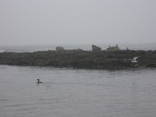 Marden Rocks