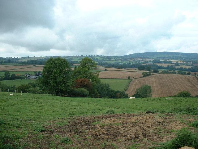 Farmland near Lane's End
