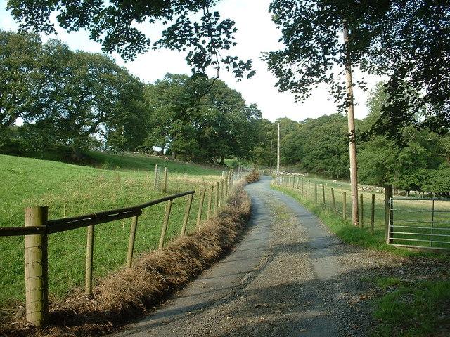 Lane to Llanerch-yr-Eryr