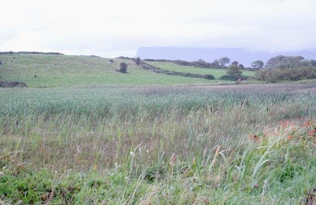 Curraghaleebeen, Rhosses Lower