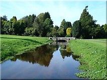 SH4555 : River at Plas Glynllifon by Dot Potter