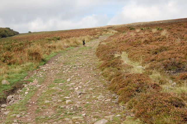Stony path along south side of Dunkery Hill