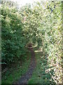 TM0764 : Middy Railway Footpath by Keith Evans