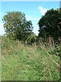 TM0563 : There was at one time a Railway line here by Keith Evans