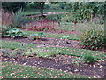 SP5206 : Order beds, Oxford Botanic Garden by David Hawgood