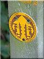 TM0563 : Footpath marker post. by Keith Evans