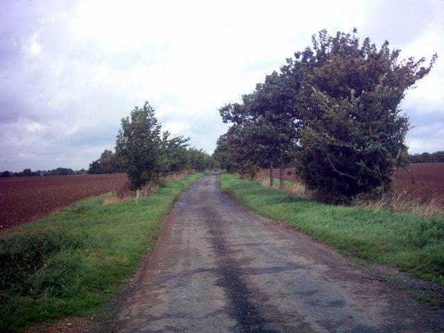 Badingham Lane near Manor Farm