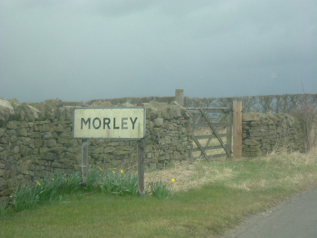 Approach to Morley