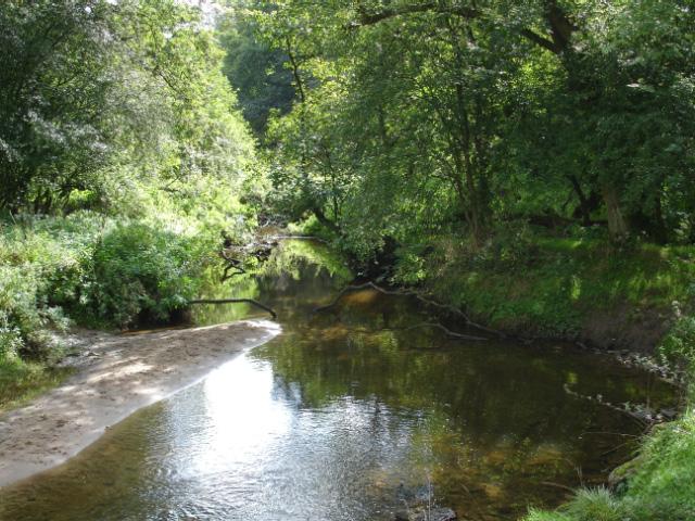 Anderton Nature Park - Lesley's Leap