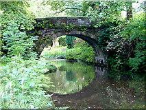 SD9625 : Bridge across the Rochdale Canal, Eastwood by Nigel Homer
