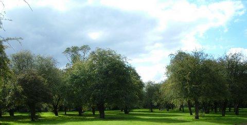 Canons Park on a crisp October morning