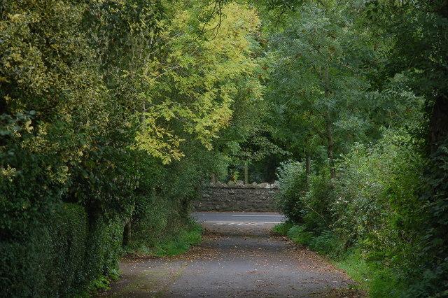 Lane from Donegore motorway  footbridge, Co Antrim