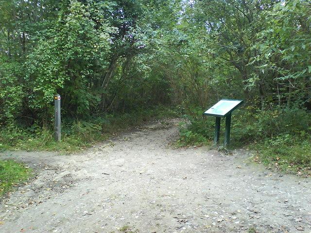 Footpath Crossing on Downs Road