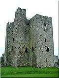 N8056 : Trim Castle by Dave Napier